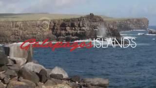 Galapagos in Summer Season