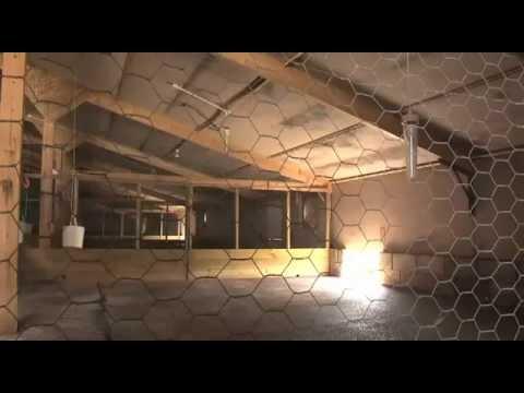 Game farm – hut building