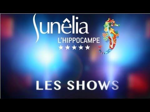 Spectacle, show, cabaret au camping en Provence l'Hippocampe
