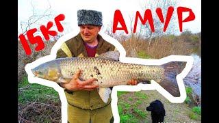 Ловля рыбы в новочеркасске теплый канал
