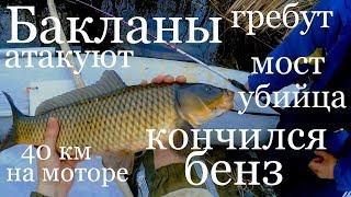 Рыбалка 2018.  РыбалкА НА сазана ПодъемниКом пауком с лодки. Рыбалка на сазана - карпа.