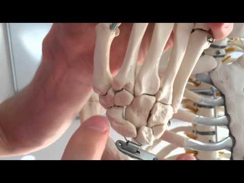 Banken Vakuum Osteochondrose