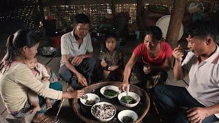 Laos: Nutritious Entertainment