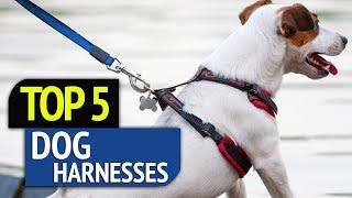 TOP 5: Dog Harnesses