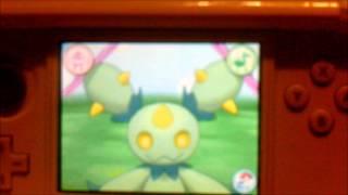 Maractus  - (Pokémon) - Pokémon Amie 556 Maractus