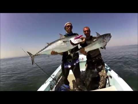 Video su pesca del 2015 su YouTube