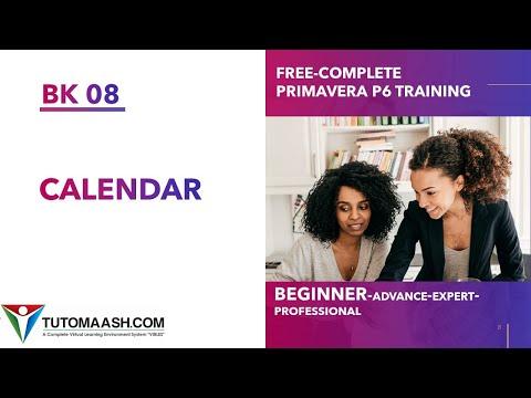 BK08- Calendar in Primavera P6 | Free Primavera p6 Online tutorial ...