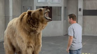 """If """"Real People"""" Commercials were Real Life - CHEVY Fuel Efficiency/Grizzly Bear"""