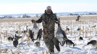 Angel Wing Outfitters + Molt Gear: DAY 1 Canada Goose Hunt