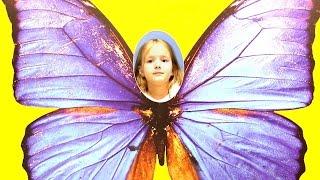 Видео для детей. Москва для детей: Сад Бабочек ВДНХ. Выходные с детьми.