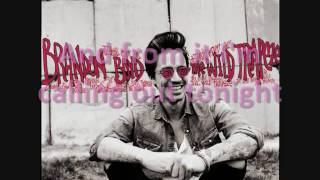 Brandon Boyd - Mirror Of Venus