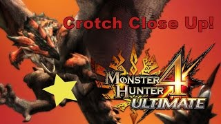 Monster Hunter 4 Ultimate 3DS - Rathalos Crotch Close Up! (Funny Moments)