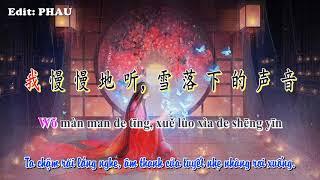 [Vietsub] Âm Thanh Của Tuyết Rơi ( 雪落下的声音)    Tần Lam    Tone nữ