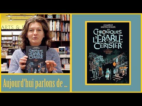 Vidéo de Camille Monceaux