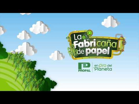 Propal - Carvajal Pulpa y Papel