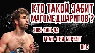 Кто такой Забит Магомедшарипов? Ушу-саньда, Гран-при ACB и UFC