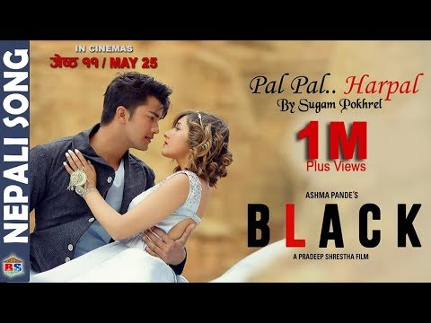 Pal Pal Harpal | Nepali Movie Black Song