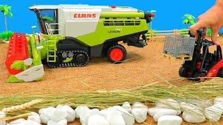 Mähdrescher auf dem Acker   Traktor,Kipplaster,Bagger,Gabelstapler von Bruder Spielwaren für Kinder