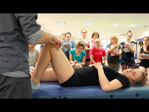 Tylną stronę mięśnia udowego