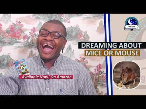 DREAMING ABOUT MICE/MOUSE - Biblical And Spiritual Meaning Of Mice
