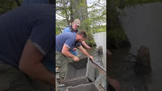 How to set wire nets for catfish