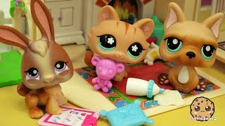 Baby Daddy Boot Camp - LPS Mommies Series Littlest Pet Shop  - Part 68 Cookieswirlc Video
