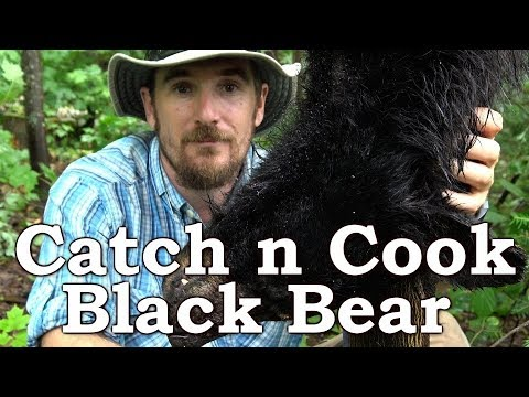 Download Catch And Cook BLACK BEAR!!! | BEYOND SURVIVAL | The Wilderness Living Challenge 2017 | S02E06 HD Mp4 3GP Video and MP3