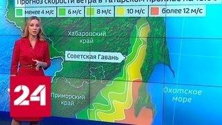 Погода в районе крушения двух Су-34 остается сложной - Россия 24