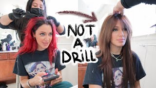 dying my hair a NATURAL COLOR for the first time in 5 YEARS + reactions!! (hair transformation)
