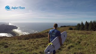 Experience The Oregon Coast Up Close & Personal! Things to do on the Oregon Coast.