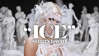 SHIRIN DAVID   ICE