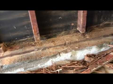 Recently, I went out on a service call to a home in East Brunswick, NJ to repair damages from a termite...