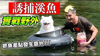誘捕溪魚,實戰野外『抓魚差點發生意外』