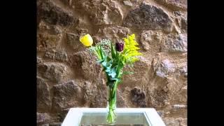 Video del alojamiento Azagalla SPA