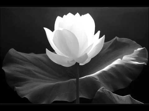 129/143-Luận Đại Thừa Khởi Tín (tt)-Phật Học Phổ Thông-HT Thích Thiện Hoa
