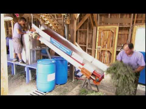 Лавандовое масло (Как это работает)