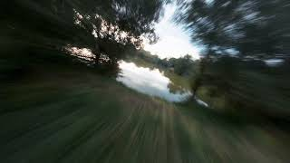 Gentle flying over the pond   FPV