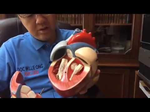 Kung paano gamutin ang kuko halamang-singaw sa klinika