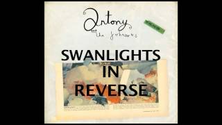 """Antony and The Johnsons - Beginning of """"Swanlights"""" in reverse"""
