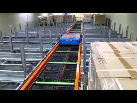 AS/RS combine Shuttle Rack System