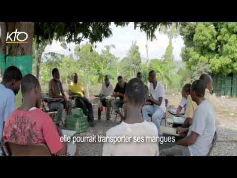Haïti : des mangues au service de la reconstruction