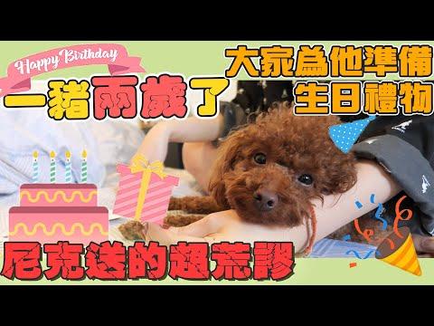 一豬的兩歲生日 大家一起幫一豬慶生
