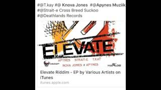 Elevate Riddim Instrumental - Deathlands Records / Daily Dancehall Productions