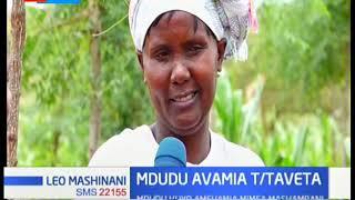 Wakazi wa Taita Taveta wanagharamia baada ya mdudu kuvamia mashamba yao