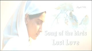 Song of the birds   Lost Love