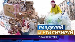 Экологическая акция «Раздельный сбор» прошла на 14 площадках Великого Новгорода