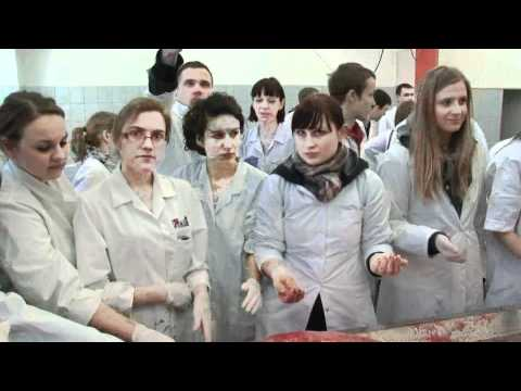 W aptece kupić samicę patogen