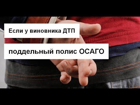 Что делать, если у виновника поддельная страховка ОСАГО — AutoTonkosti.ru