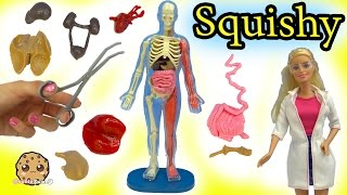 Squishy Human with Scientist Barbie Teacher & Student Monster High Dolls Video