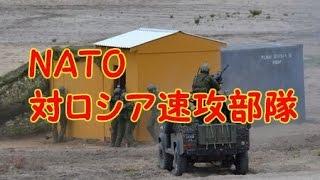 NATO対ロシア速攻部隊を拡大非加盟国の参加検討